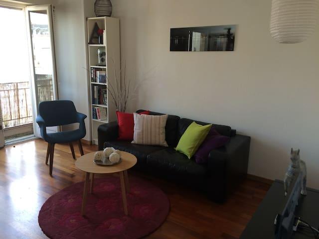Geneva attractive central apartment