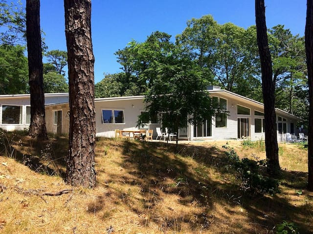 Mid-Century modern house, entirely renovated in 2015.