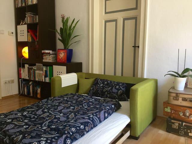 Helle Zwei-Zimmer-Altbauwohnung in zentraler Lage - Nürnberg - Pis
