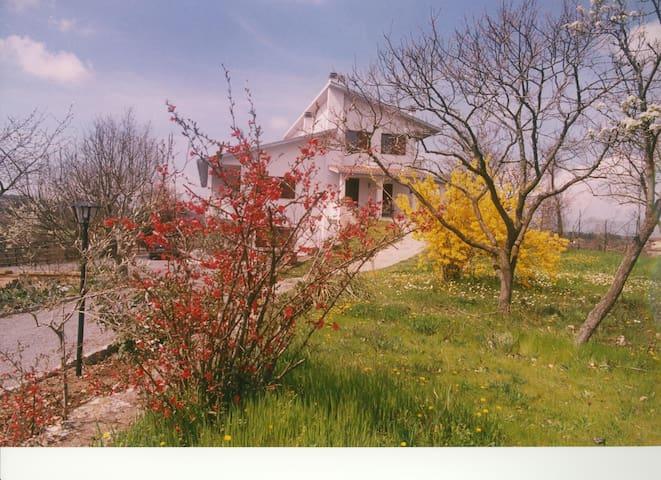 Villa Il Melograno - Bagnoregio - Villa