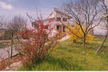 Villa Il Melograno - バニョレージョ