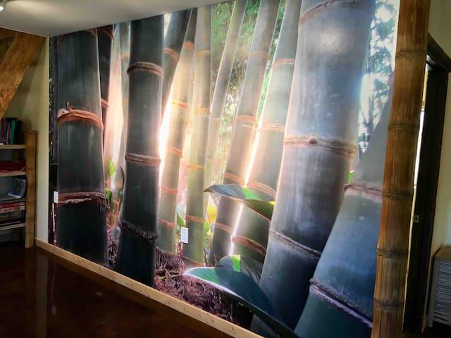 Desert Bamboo