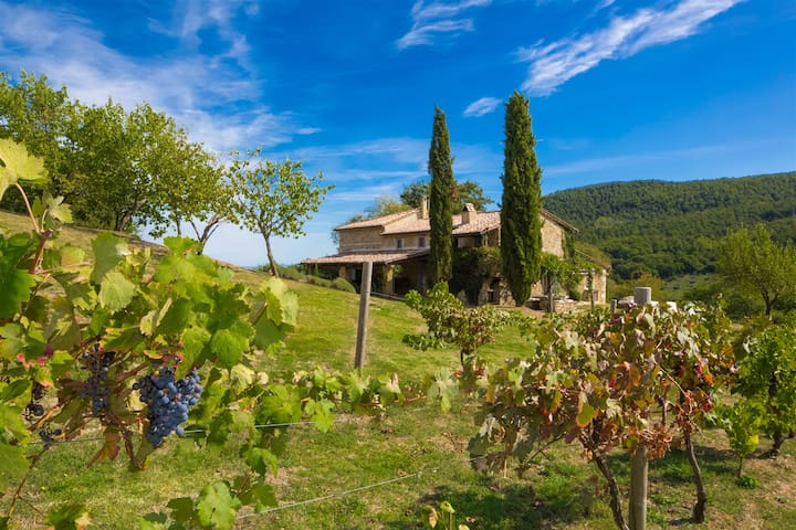 Luxury Tuscan countryside villa with pool/WiFi/AC - San Casciano dei Bagni - Vila