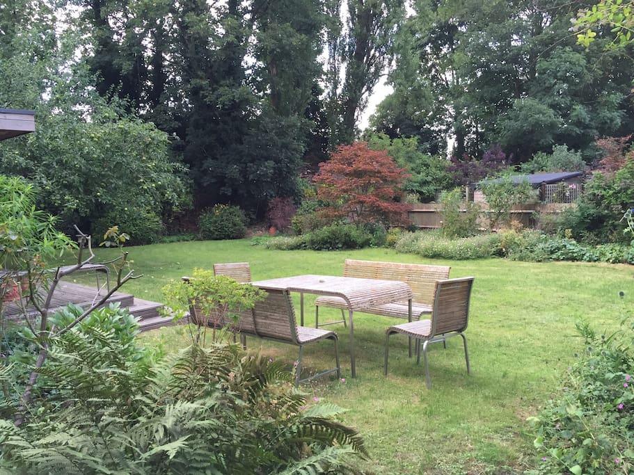 113ft garden