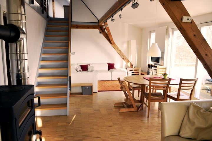 Fully furnished flat 3bed, 2 bath, roof terrace - Edingen-Neckarhausen - Apartamento