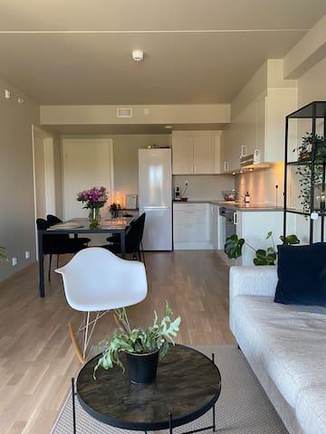 Ny og sentral leilighet i Oslo