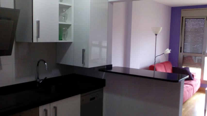 Atico duplex a 10 min de santander - Astillero - Apartment