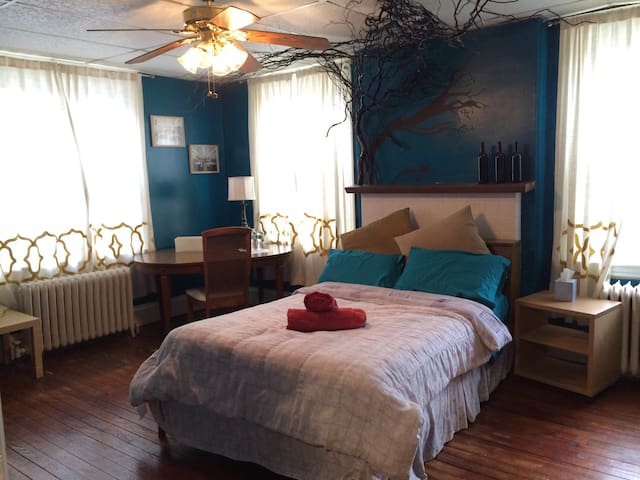 BLUE ROOM in Observatory Hill - Pittsburgh - Casa