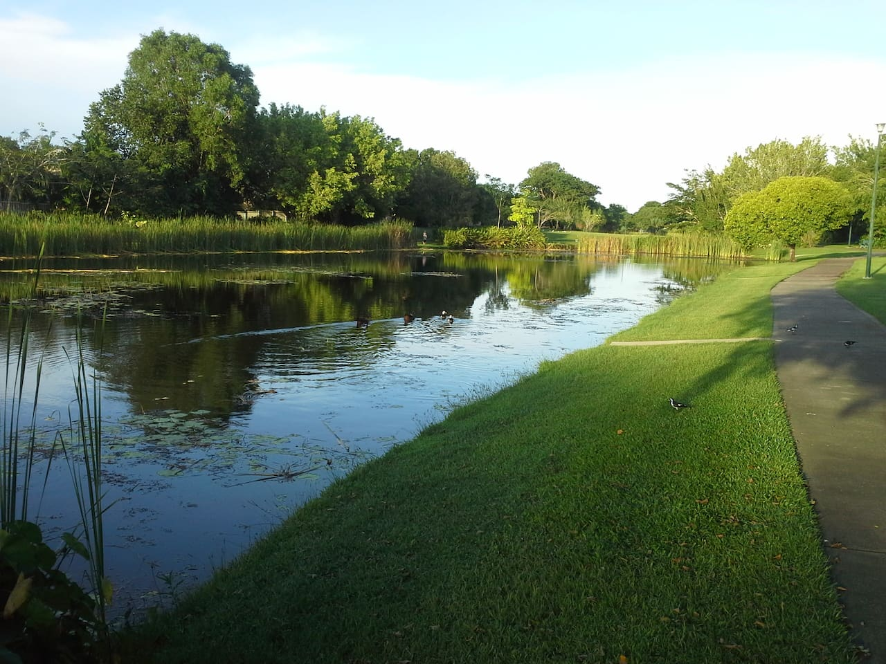 5 minutes walk to beautiful lagoons that border the Palmerston Golf Course