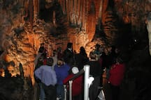 Yarrangobilly Caves just 45 minutes drive from Elm cottage