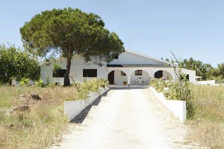 Villa@15 Km from Lisbon & Beaches