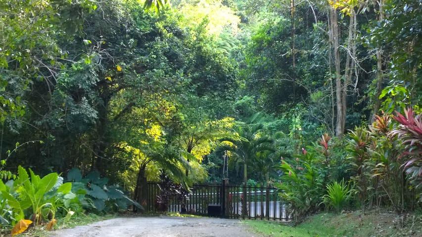 Hacienda Torres Paradise of Nature - Ceiba - Casa