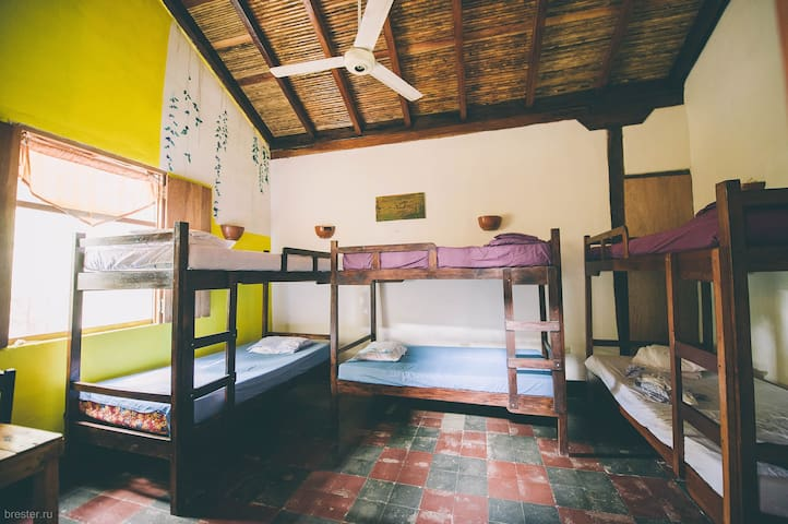 Bed in Mix Dormitory Room - Granada - Bed & Breakfast