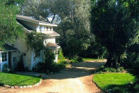 Charming country mountain home - Markleeville - House