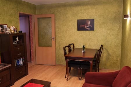 Cozy flat Gliwice, walking distace fm center, crib - Gliwice
