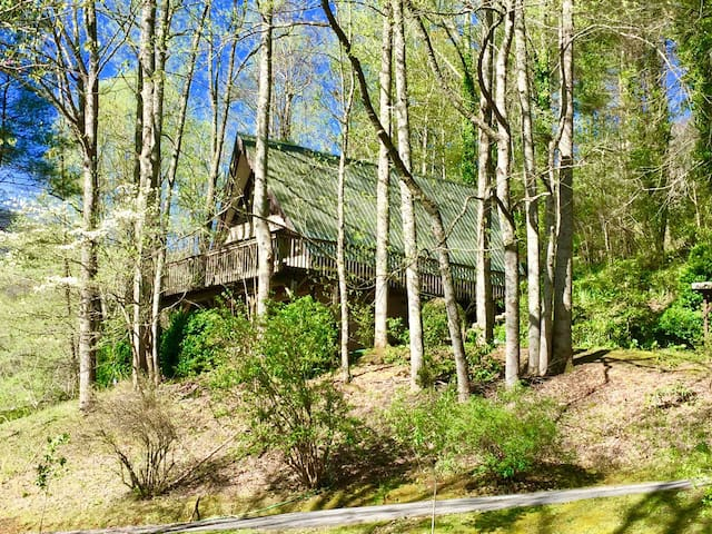 View of Ellijay Cottage from the Orchard
