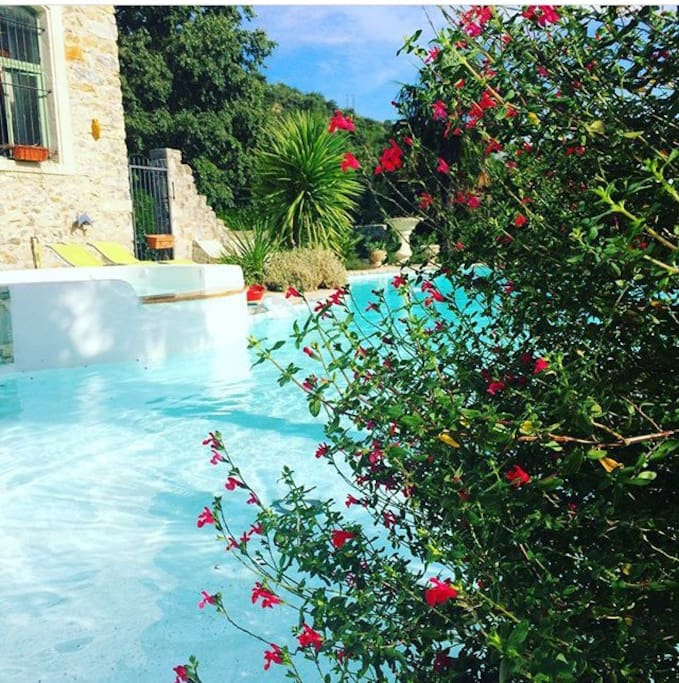 La piscine et le Jaccuzzi