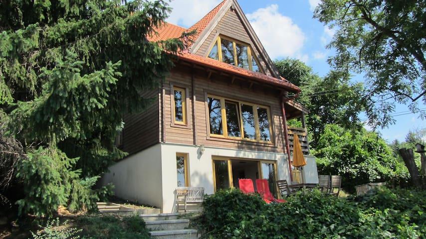 The Wooden Beauty - Zebegény - Casa