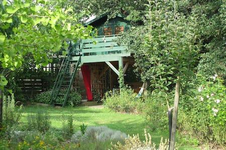 nid douillet dans un grand chene - Larroque-Engalin - Rumah Pohon