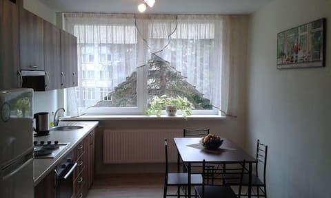 Comfortable apartments in Šilutė