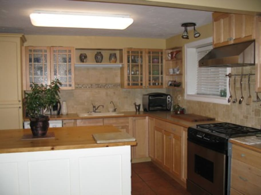 A well equipped family kitchen.