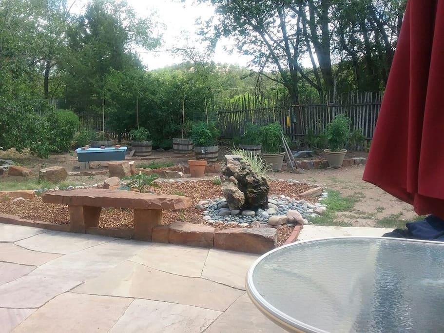 Backyard in July