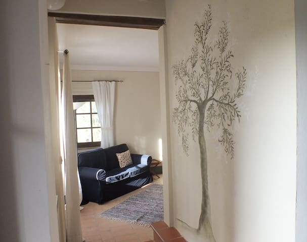 the entrance in the living - bedroom