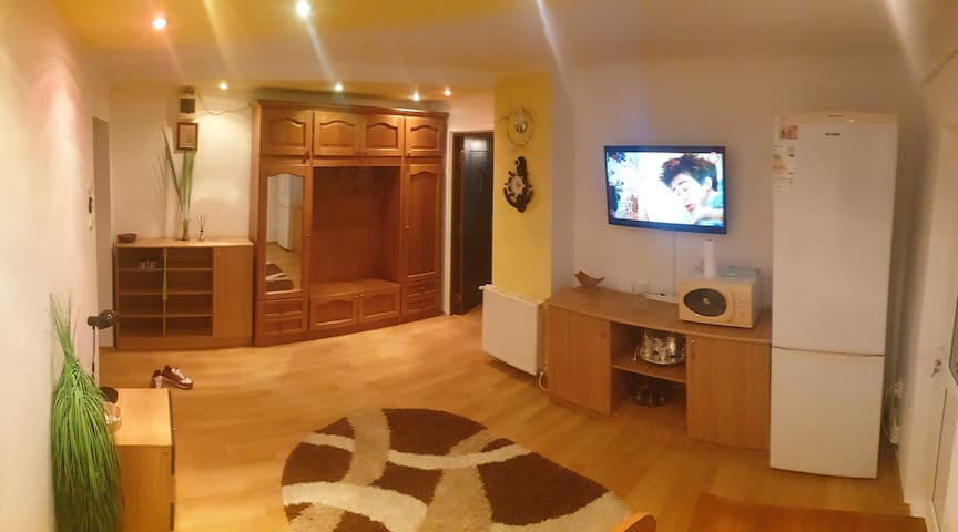 Apartament curat si spatios pentru doritori