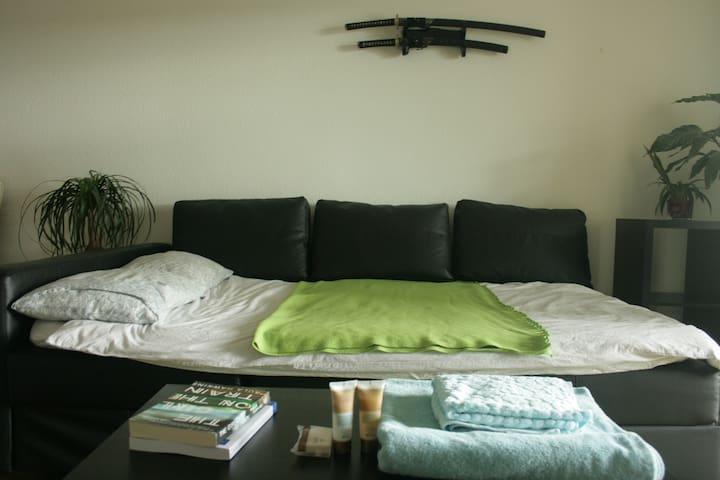 Cosy sofa-bed at the UN doorstep - Genève - Appartement
