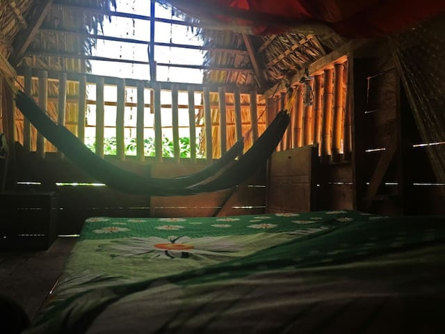El Zopilote-Iguana Hut-Permaculture Farm