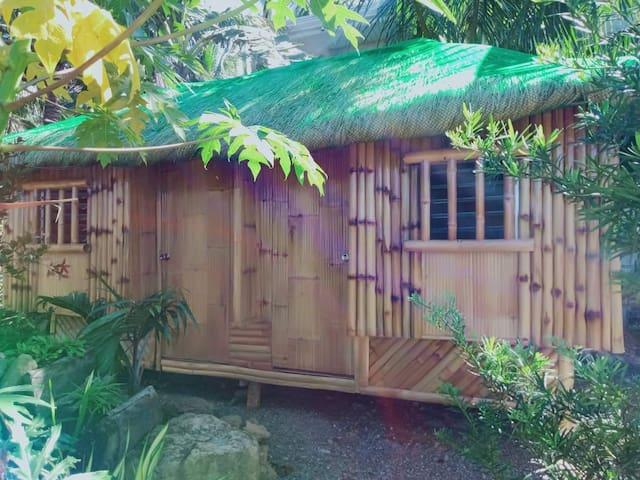 Bahay kubo or Bamboo Hut