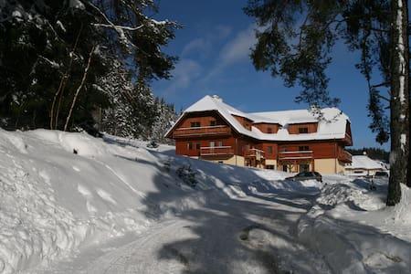 Apartmán na Zadově - Šumava - Stachy