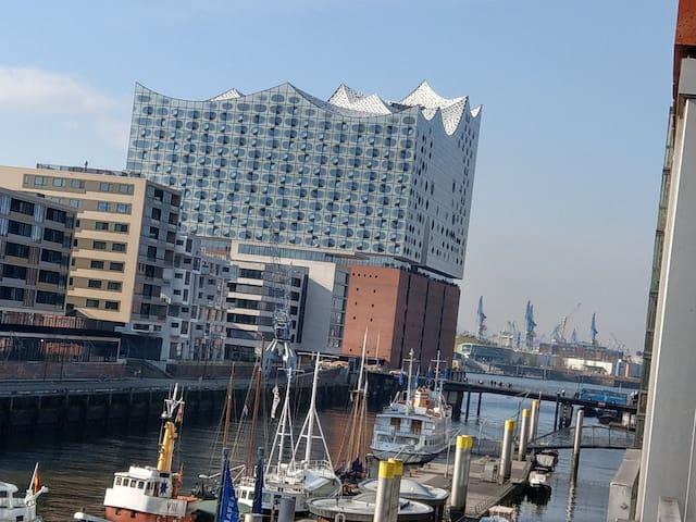 Kupfergoldspeicher in der Hafencity