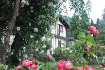 Uno scorcio della casa tra le rose