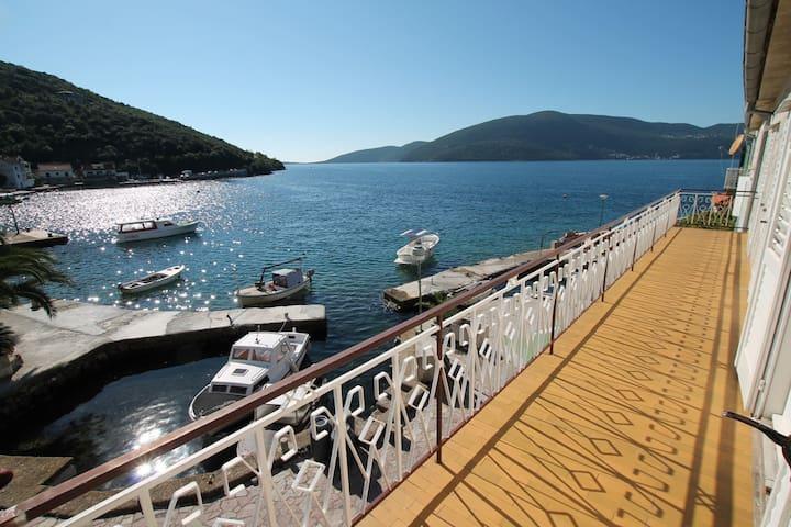 2 bedroom apartment on sea coast - Herceg Novi - Flat