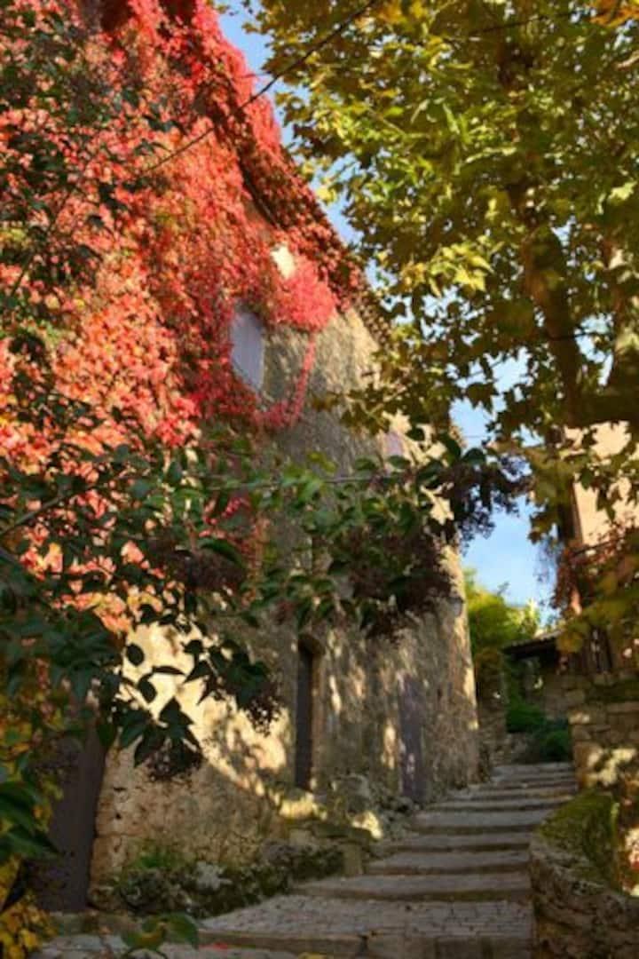 Loue maison de charme en Provence.