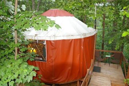 Yurt in Woods at Eco-Friendly B & B - Dahlonega - Iurta