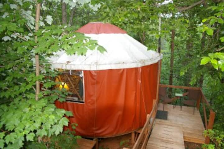 Yurt in Woods at Eco-Friendly B & B