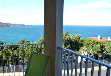 Studio rénové terrasse vue sur mer - Banyuls-sur-Mer - Leilighet