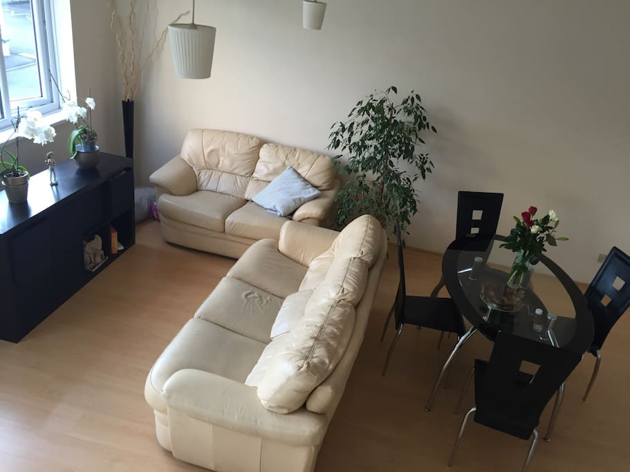 Spacious and bright living room ( communal area )