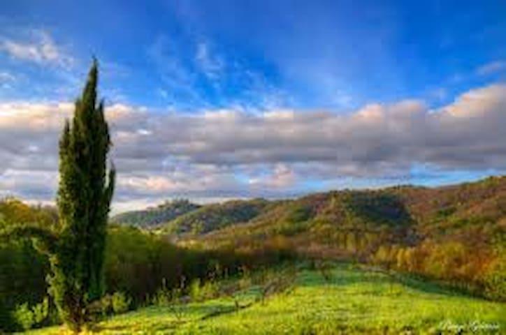 ..fra dolci colline.. - Viganò - House