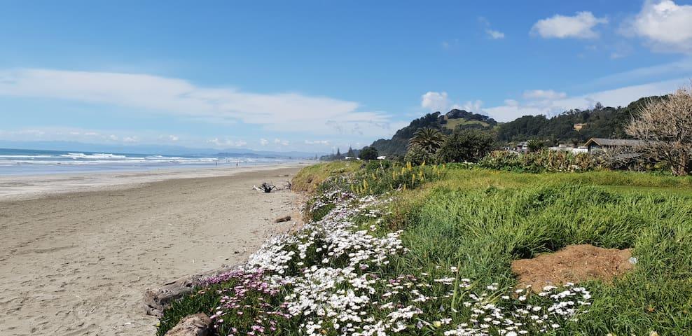 Sunseeker Apartment – Ohope Beach
