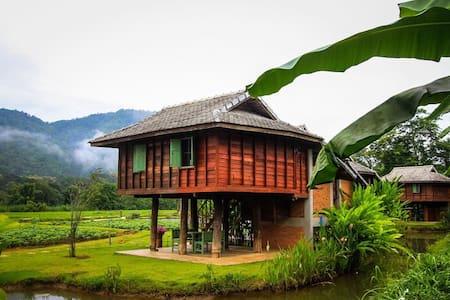 Lhongkhao Samoeng หลองข้าวสะเมิง - Blockhütte