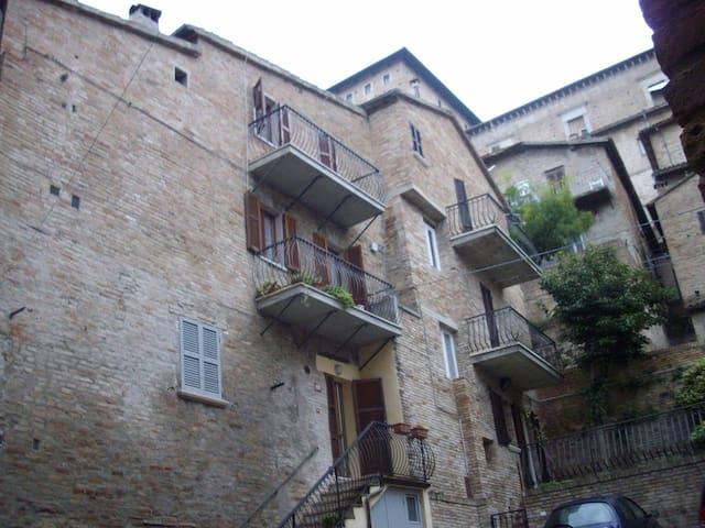 Speciale Centro Storico - Urbino - Apartamento