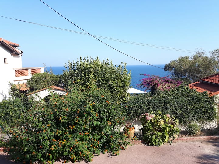 appartement 2/4 pers charme  terrasse vue sur mer