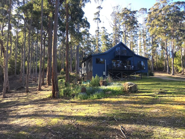 Cosy wooded home overlooking Pirates Bay & beyond - Eaglehawk Neck - House