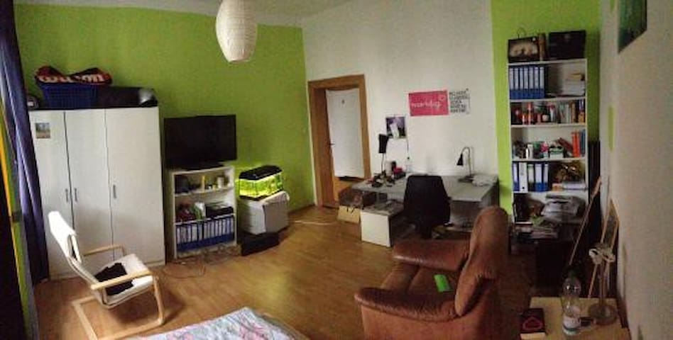 Helles 17qm WG-Zimmer nahe Zentrum - Bayreuth - Apartment