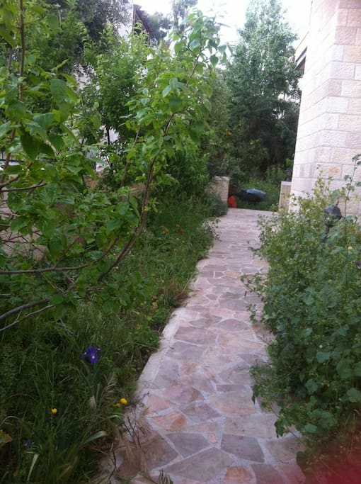 Path from front gate to stairwell, elevator & back garden