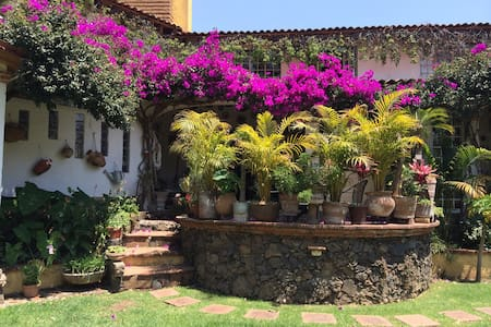 Pretty and cozy room with two individual beds or one king size. Private and luminous bath. You will be able to use of the kitchen. Wonderful garden with palms, fruit trees and lots of flowers. Small pond. In well located calm district and.