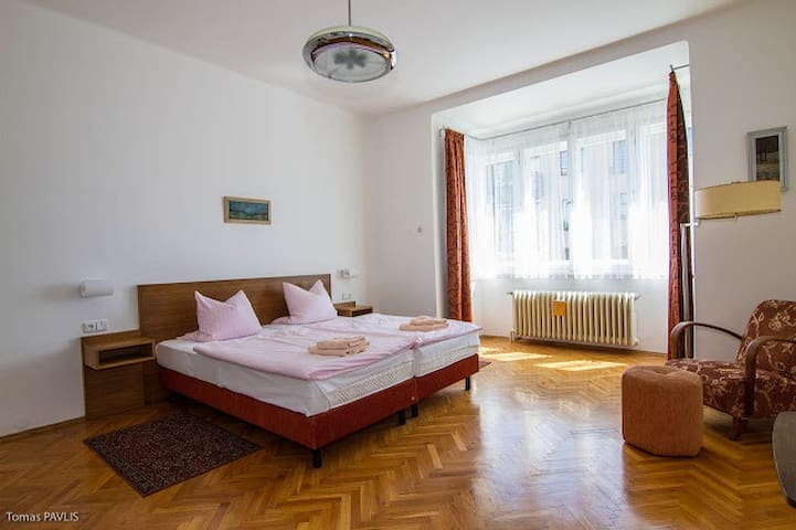 90 m2 newly renovated luxury Apart. - Praha 8 - Bed & Breakfast